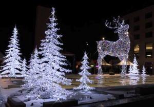 iluminat_festiv_2012