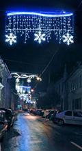 festivorn1.jpg